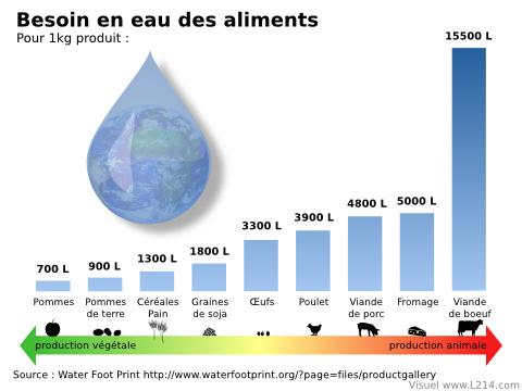 eau-fonction-aliments-480x360.png
