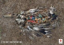 bird-trash