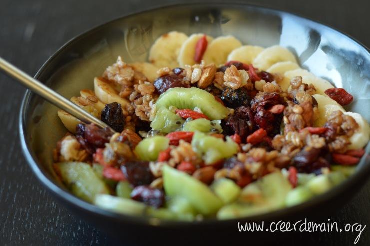 porridge vegan fruits secs.jpg