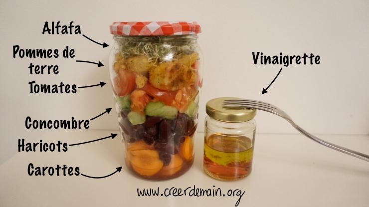 vegan lunch box repas sain.jpg